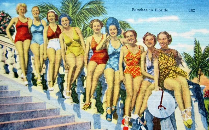 peaches in Florida postcard